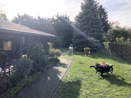 Blick in den Garten/Carport